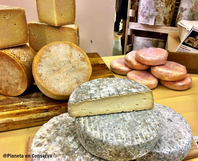 quesos-cultivo-2